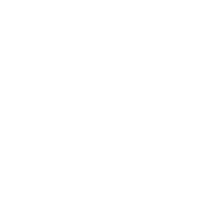 Hyttesaga logo